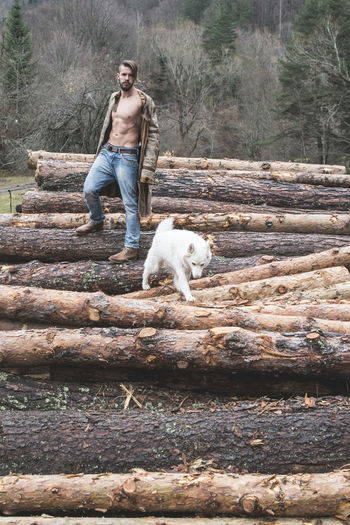Portrait of young man standing with dog on logs of wood in forest