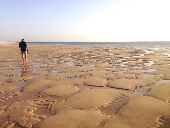 Sea Beach Water Nature Walking FootPrint Rear View Outdoors Sand Scenics Beauty In Nature One Person Fresh on Market 2017 EyeEmNewHere Lost In The Landscape The Great Outdoors - 2018 EyeEm Awards