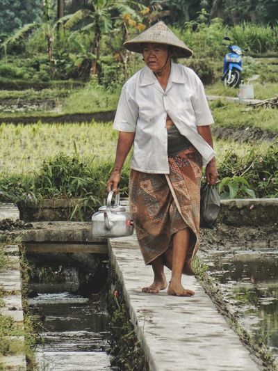 the Legend of life Indonesia Photography  Humanactivity Jogja INDONESIA This Is Aging Water Working Full Length Farmer Manual Worker Rural Scene Standing Agriculture Men Asian Style Conical Hat