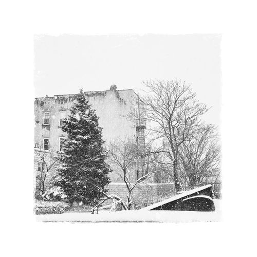 Bare trees by snow covered house against sky