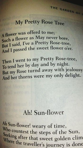 Text Paper No People Black Background Literature Flowers Garden Nature Romantic William Blake