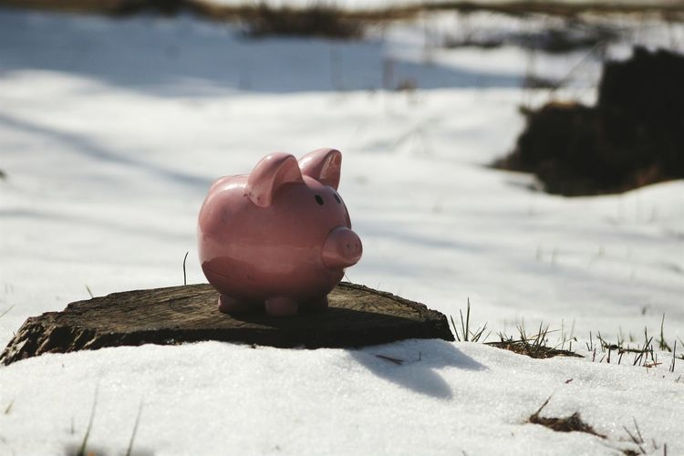 Close-up of piggybank on rock at snow covered field