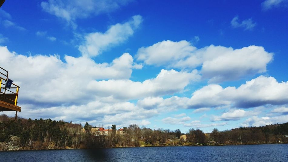 Stockholm, Sweden Ekerö Tree Sky Love <3 Clouds Clouds And Sky Uphigh Heaven Life Peaceful View Nature Love Trees