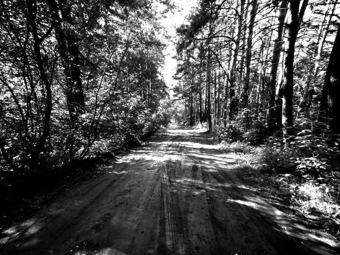 Melancholic Landscapes First Eyeem Photo