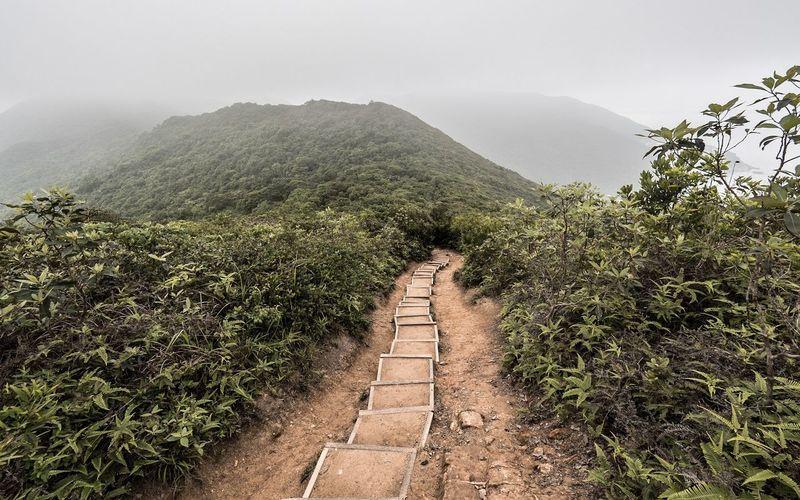 EyeEmBestPics EyeEmNewHere Hkig Hk HKG HongKong ASIA Hong Kong Outdoors Rural Exploration Rural Landscape Beauty In Nature Landscape Rural Scene Mountain RuralExploration Hike Hikingadventures Hiking Trail Hiking❤ Hiking Adventures Hiking View Backpack Backpacking