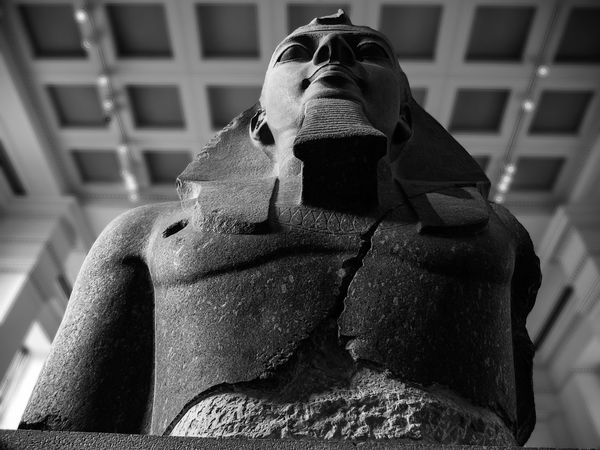 Dubbed 'The Younger Memnon' on its arrival in London in the 19th century, this granite statue of Egyptian pharaoh Rameses II comes from Rameses' mortuary temple (the Ramesseum) in Luxor, Egypt. It now takes pride of place in the Egyptian sculpture gallery in the British Museum. Ancient Ancient Egypt Blackandwhite British Museum Close-up Cracked Granite High Angle View King Lookingup Pharaoh Ramesses II Regal Sculpture Statue Stone Textured  Younger Memnon