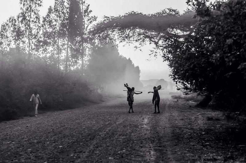 People standing on dirt road in foggy weather