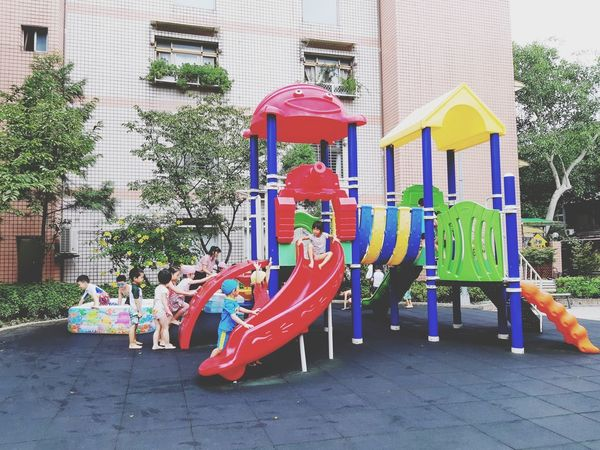 Summer In The City Multi Colored Tree Building Exterior Architecture Built Structure Outdoor Play Equipment Slide Amusement Park Ride Amusement Park Playground