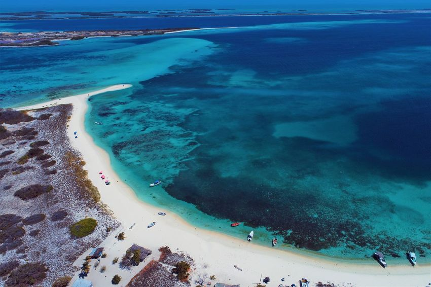 Aerial view of island and beach in Los Roques, Venezuela Water Sea Beach Land Beauty In Nature Nature Sand Scenics - Nature High Angle View Day Incidental People Group Of People Sport People Holiday Vacations Tranquil Scene Idyllic Outdoors Turquoise Colored Los Roques Madrisqui Caribe Caribbean Caribbean Life Caribbean Island Francisqui Crasqui Carenero's Beach Cayo De Agua Venezuela