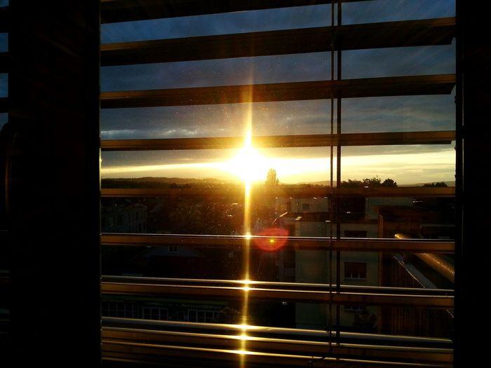 Urbanphotography View Window View Sunset Sunset In Window Switzerland Zurich, Switzerland Zürich Shades