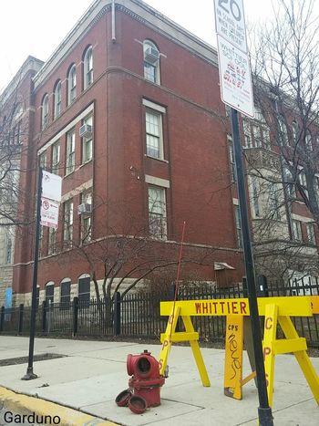 Chicago Pilsen Neighborhood Education