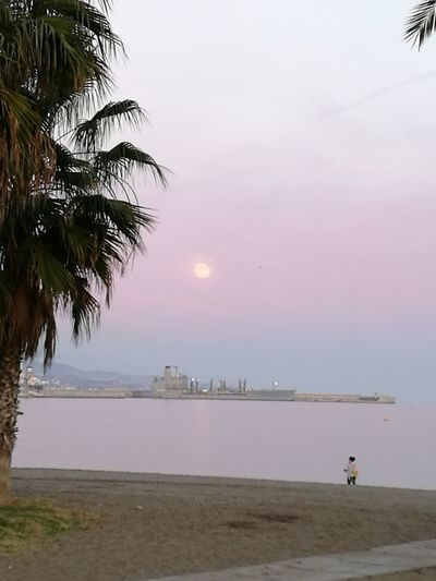 Atardecer Colors Moon Luna Huelin