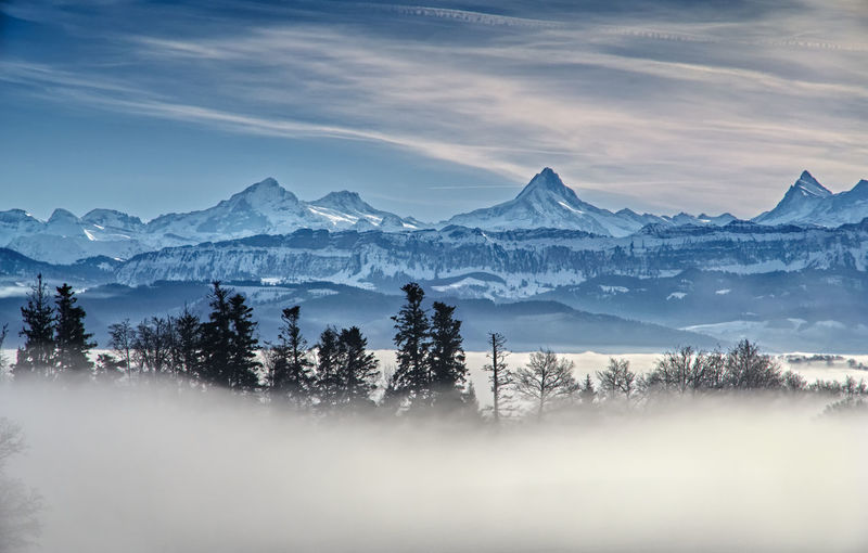 Mountain Winter Tree Landscape Mountain Range Snowcapped Mountain Fog Switzerland Alps Bern Cold Temperature Suisse  No People Montagne Brouillard Tranquil Scene