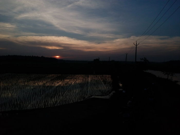 gone for a walk yesterday evening 😊🌃. experimental photography The Week On EyeEm The Purist (no Edit, No Filter) Exceptional Photographs Simple Quiet Love Dark Light And Shadow Paddy Field ASIA Enchanting India Mobilephotography Low Light Asian Culture From My Point Of View EyeEm Selects Water Sunset Tranquility Reflection Agriculture Cloud - Sky Landscape Nature No People Beauty In Nature Rural Scene Scenics Outdoors Sky Day Tree
