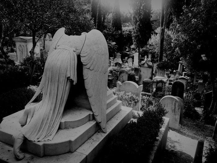 Cimitero Acattolico Cimiteromonumentale Acatholic Cemetery Photography Cemetery_shots Cemetery Angel Cemetery Showcase June