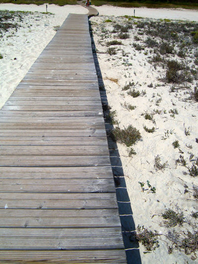Beach Summer Holidays Pier Sand White Sand Nature Day Outdoors High Angle View No People Nature Close-up Wood - Material
