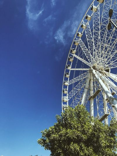 Amusement Park Amusement Park Ride Architecture Arts Culture And Entertainment Blue Built Structure Circle Cloud - Sky Day Fairground Ferris Wheel Geometric Shape Large Low Angle View Nature No People Outdoors Plant Shape Sky Tree 10
