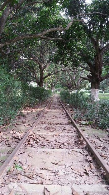 Abandoned Rail Road : Taking Photos Hello World Check This Out Lonely Rail Road at Berhampore India
