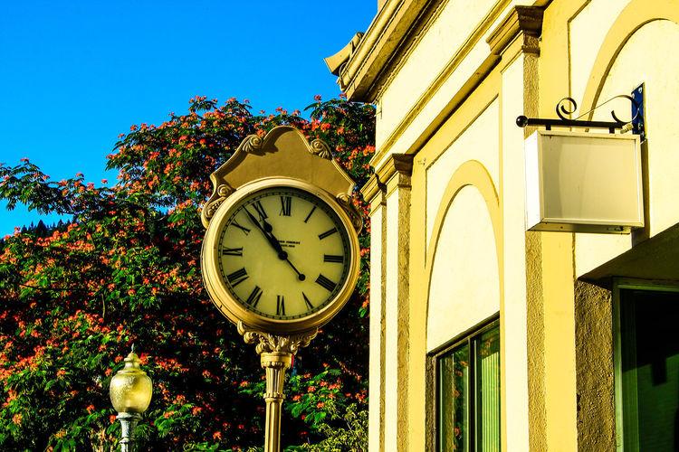 Diamond Mafia Photography Historical Building Free Masons Dunsmuir C.a Antique Clocks At Street