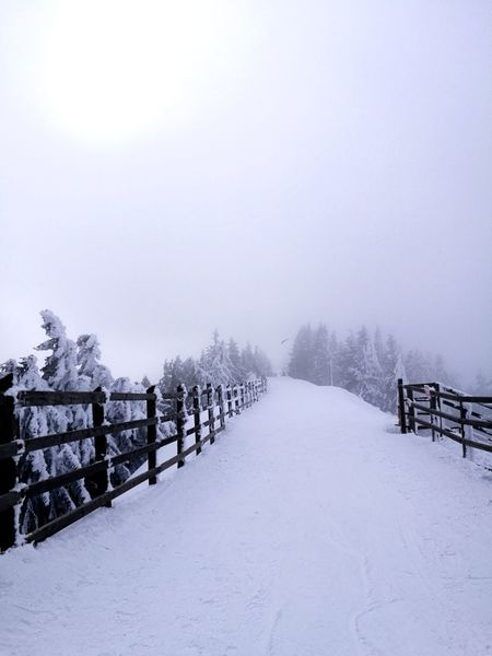 Snow Winter Cold Temperature Footpath Weather Railing Snowing Polar Climate No People Snowcapped Mountain Outdoors Fog Tree Nature Beauty In Nature
