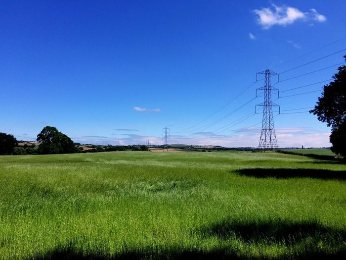 Electricity  Cable Electricity Pylon Field Power Supply Connection Fuel And Power Generation Power Line  No People Grass Landscape Tranquility Day Growth Nature Tree Sky Clear Sky Technology Beauty In Nature