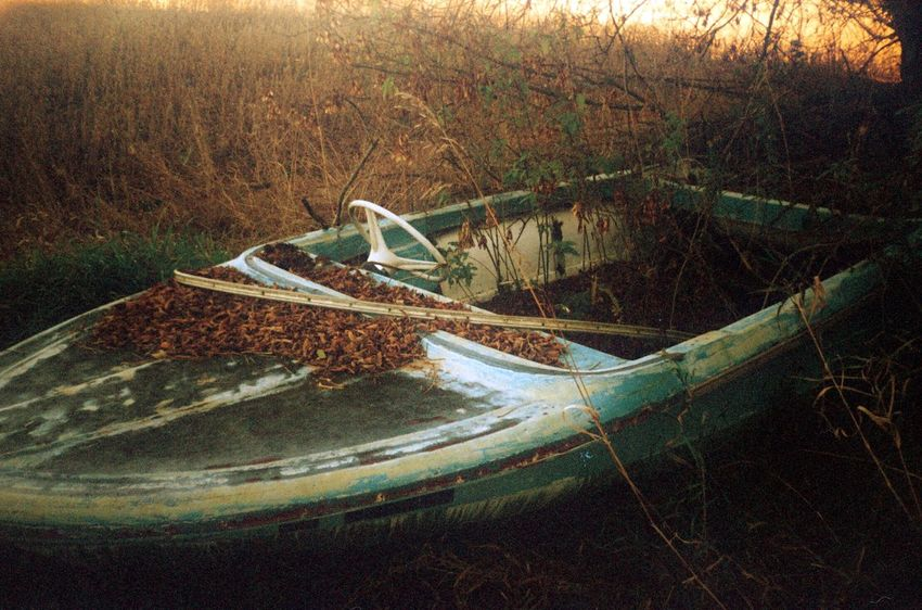 Light Leaves 35mm Film 35mm Shoot Film Film Leaves Abandoned Abandoned Boat Boat Abandoned No People Day Grass Outdoors Nature