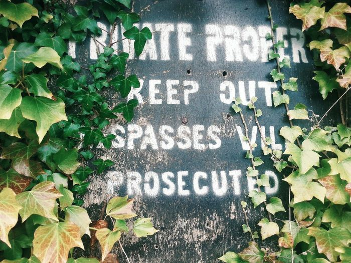 Noticeboard No Entry Sign Old Signs Trespassing Signs Ivy The Week Of Eyeem Wales Llanblethian