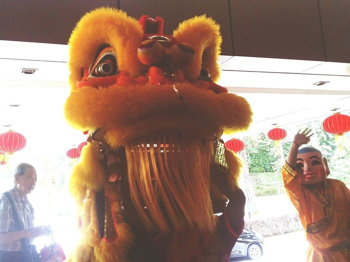 Gilda's Dad The Lion and the Big Headed Buddha Sg_streetphotography Streetphotography Southeast Asia Singapore Singapore CNY CNY2017 Chinese New Year Lion Costume Chinese Tradition Chinese Culture