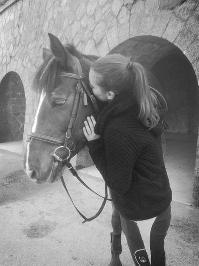 She's so pretty💋 Young horse, 5yo, girl🐎 Taking Photos Enjoying Life Hello World Horse Self Portrait