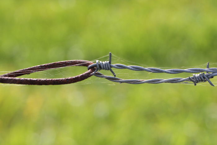 EyeEm Selects Barbed Wire Outdoors No People Alt Und Neu Old And New Chain Macrophotography Old And Rusty Nice View Other Point Of View No Filter, No Edit, Just Photography The Week On EyeEm Macro Photography Stacheldraht Draht Focus On Foreground Strength Security Metal