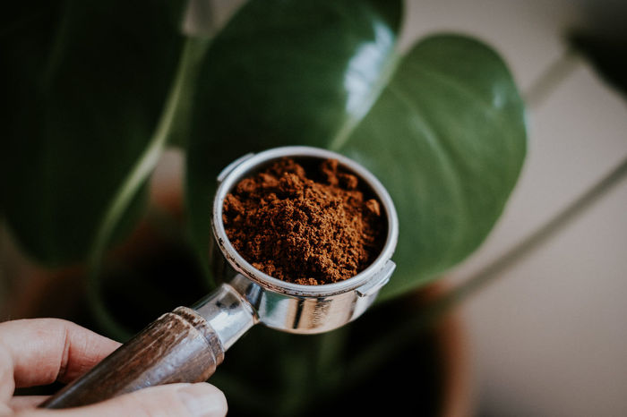 Coffee Coffee Time Freshness Ground Coffee Hand High Angle View Holding Indoors  Leaf One Person Plant Portafilter Preparation  Selective Focus
