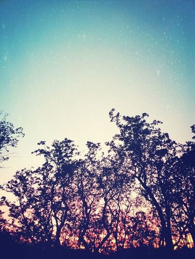 Night Lights The Sky Is Pretty