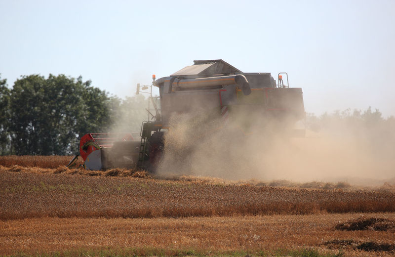 harvester during wheat harvest on a dry dusty field Harvester Wheat Field Agricultural Machinery Day Dust Farmer Field Harvester, Combine Harvester Holding Land Land Vehicle Landscape Machinery Men Mode Of Transportation Nature Occupation One Person Outdoors Plant Real People Sky Spraying Sunlight Transportation Working