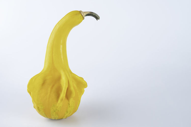 Close-up of yellow pepper against white background