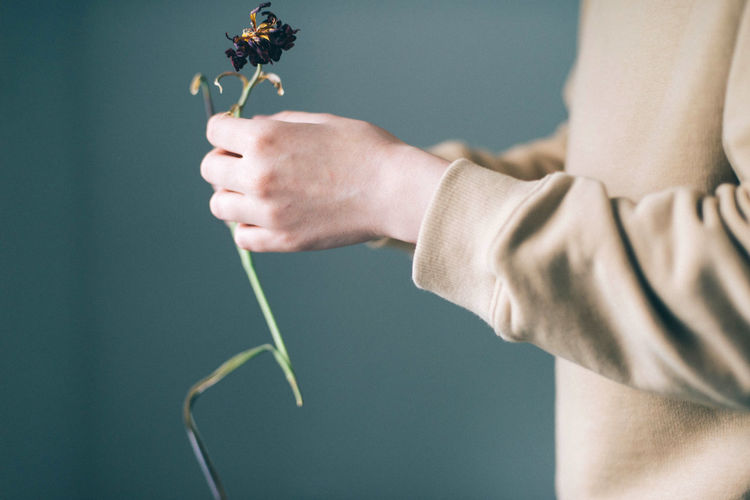 Midsection of man holding dead flower
