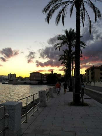 Sunset Cloud - Sky Silhouette Outdoors Tree Palms Trees Walking On The Street Street Photography Seafront View Sardinia Sardegna Italy