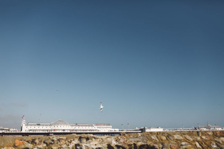 Palace Pier Against Clear Sky