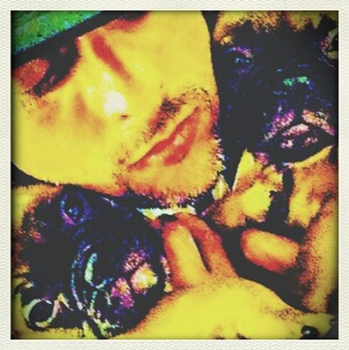 Hello World Enjoying Life ?? The Greendays Singer Is, With His 2 Bull Dogs! !! Hope you're fine & sorry if I can't answer I'm at the studio for a new Album....PEACE & LOVE...????