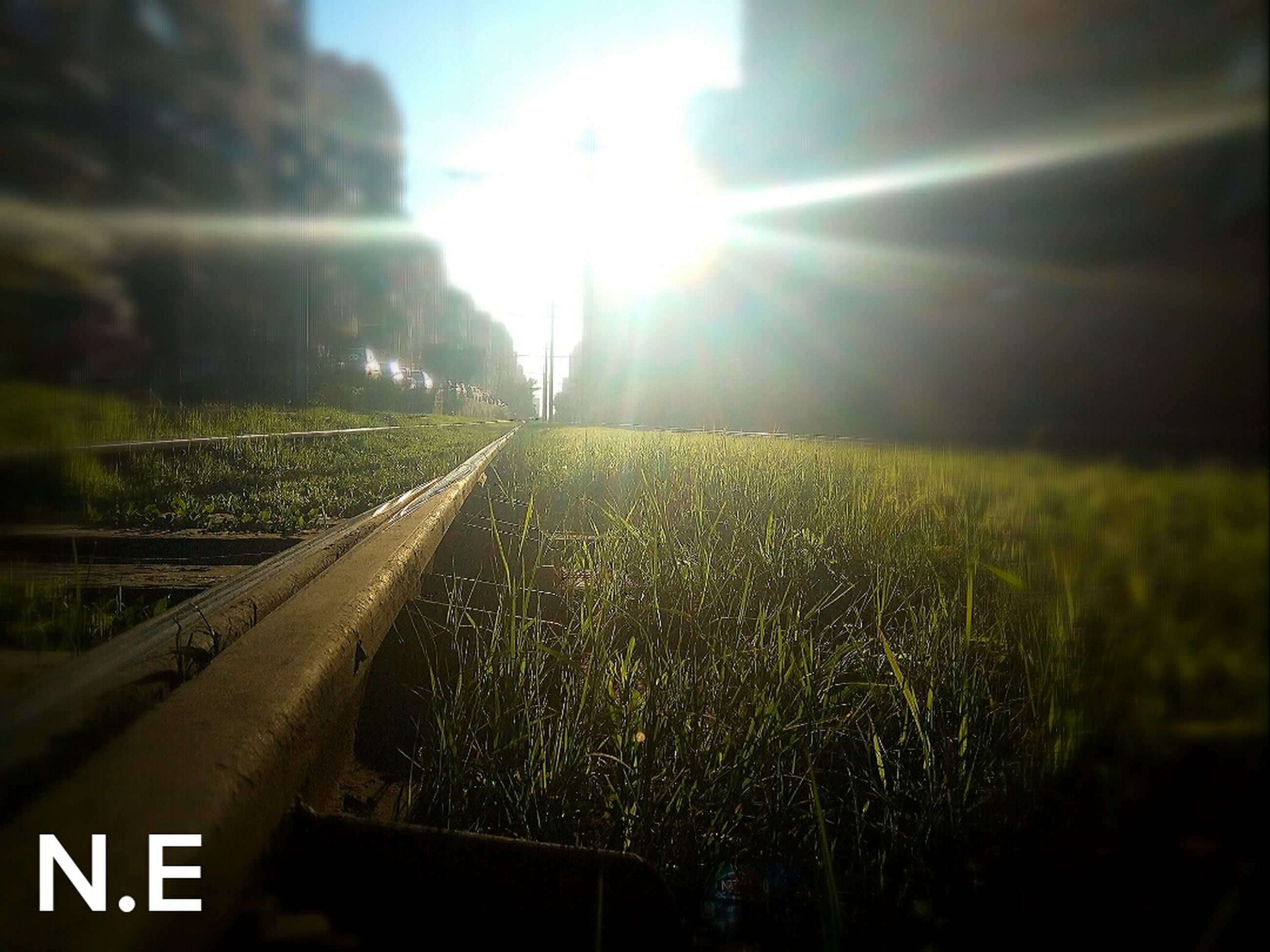 lens flare, sun, sunlight, field, grass, nature, sunbeam, no people, tranquil scene, tranquility, landscape, transportation, sky, railroad track, scenics, outdoors, rail transportation, growth, beauty in nature, day, rural scene, agriculture, close-up