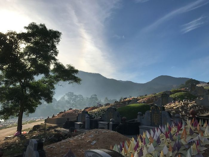 Chinese Culture Chinese Traditional Culture Chinese Tradition Malaysia Chinese 清明节 清明 马来西亚华人 Plant Tree Sky Nature Architecture Built Structure Cloud - Sky Growth Building Exterior Mountain Day No People Outdoors Sunlight Grave Tombstone Cemetery City Beauty In Nature Mountain Range