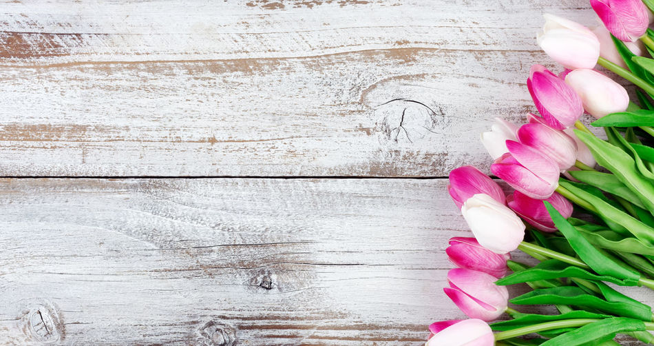 Directly Above Shot Of Tulips On Wooden Table