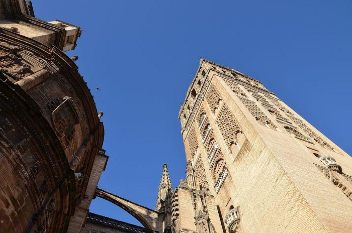 Eyemphotos Eyem Seville Sevilla Arquitecture Arquitectura Catedral Cathedral Giralda Tower