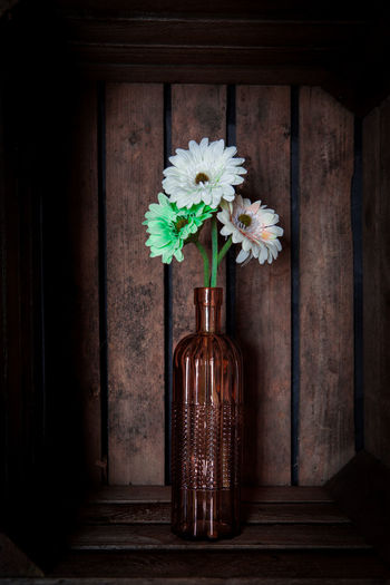 Gerbera flowers in a vase in a vintage looking wooden crate Beauty In Nature Bottle Container Day Decoration Door Entrance Flower Flower Arrangement Flower Head Flowering Plant Fragility Freshness Indoors  Nature No People Plant Vase Vulnerability  Wood - Material