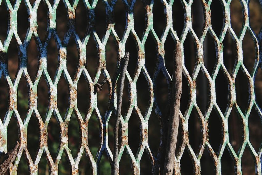 Pattern Full Frame Protection Backgrounds Close-up Safety Metal Fence Wrought Iron Metallic Repetition Gate Design Textured  Detail Part Of Abstract Iron - Metal Outdoors Focus On Foreground