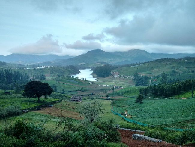 At Avalanche, Ooty Mobilephotography Mobilephoto Travel Nature Motog2 Travel Photography The OO Mission Landscape Landscape_photography Naturelovers Nature_collection