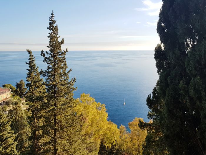 December in Sicily Sea Nature Water Horizon Over Water Sunset Landscape Beauty In Nature Tranquility Day Sky Outdoors Tree Beach Scenics Taormina Italia Sicily Travel Boats Seascape Giardini Dusk Relax Italy Shoreline