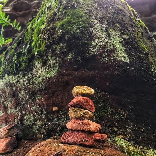 Stack Nature