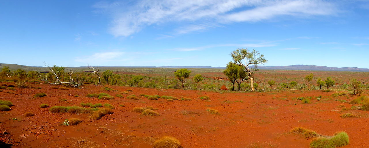 Arid Climate Day Distant Mountain Range Eucalyptus Tree Geological Paradise Geology Grass On Red Earth Horizon Over Land Iron Ore Country Landscape Nature No People Outdoors Panorama Panoramic Landscape Red Earth Scenics Semi Dessert Sky Spinefex Grass Travel Destinations