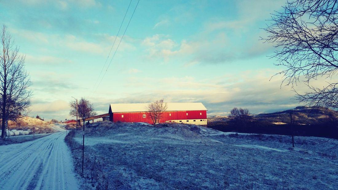 Old norwegian barn in the countryside Norwegian Barn Countryside Wintertime Oldschool Skaun