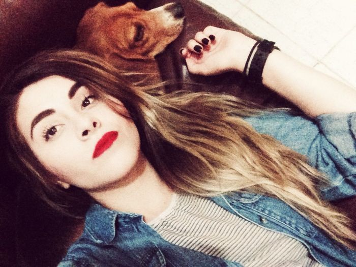 Situación sentimental Beagle Love 🐶